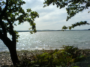 Across Poole Harbour to Arne from Brownsea Island - Copyright Laibach