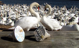 Signet Rings - Copyright Kerstin Laibach
